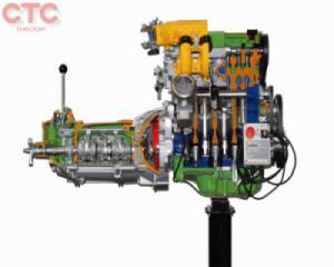 Mô hình cắt bổ động cơ xăng đa điểm điện tử + hộp số 5 tốc độ + ly hợp