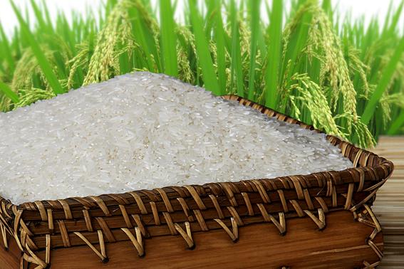 Description: Kết quả hình ảnh cho gạo trắng