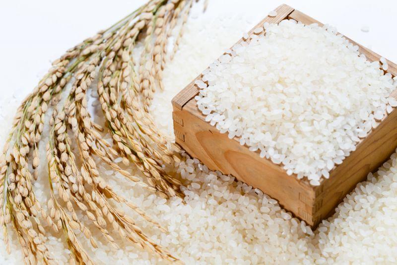 Description: Kết quả hình ảnh cho hương gạo nhật bản