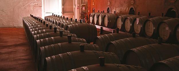 rượu vang penfolds