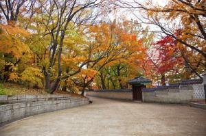 TOKYO - NÚI PHÚ SỸ - OSAKA - KYOTO - SEOUL – EVERLAND